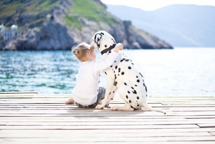 Девочка сидит на деревянной пристани и обнимает далматина