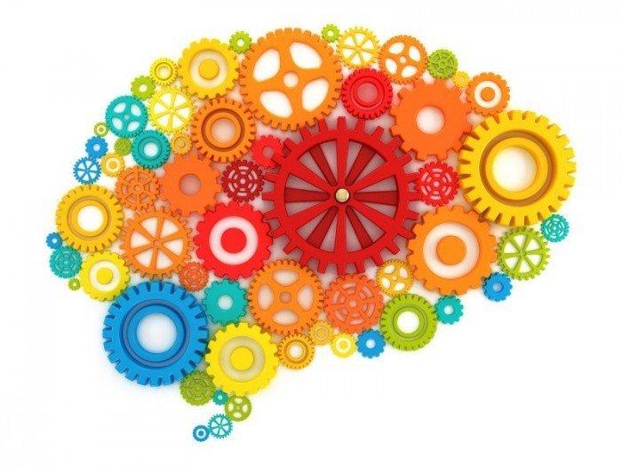 Мозг в виде часового механизма