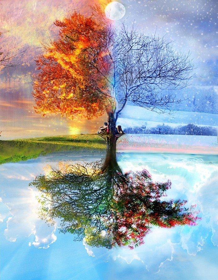 Обложка тетради с коллажем дерева в разные времена года