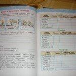 Печатная тетрадь с календарём погоды