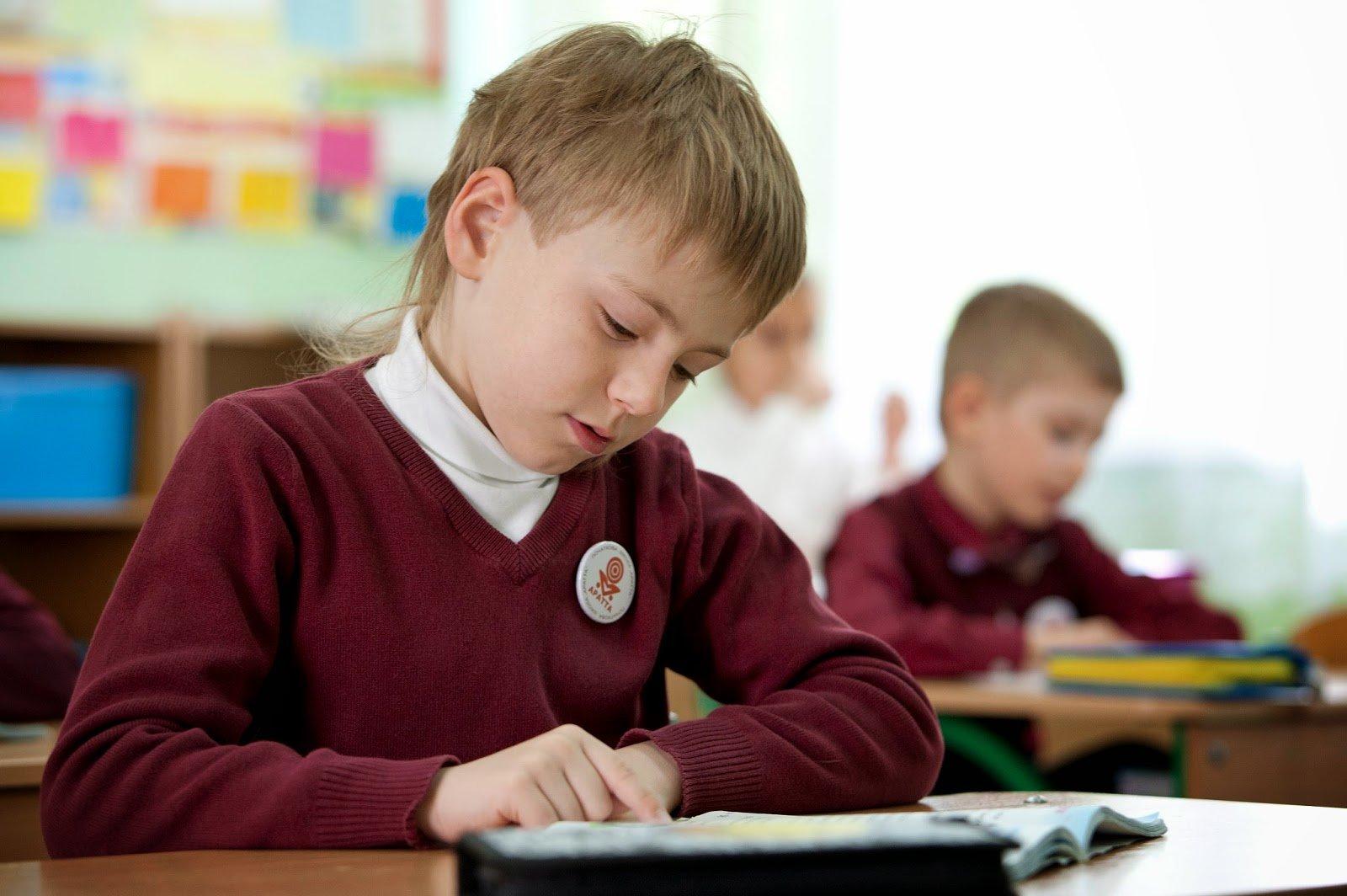 Плюсы и минусы платного и бесплатного школьного образования