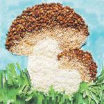 2 гриба из крупы на зелёной поляне с бахромой