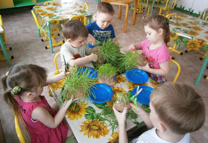Дети делают поделки из пророщенных мешочков-эколюдиков
