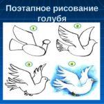 Голубь летит