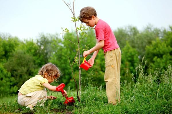 Мальчик и девочка высаживают дерево