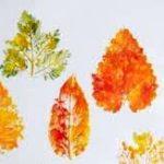 Отпечатки листьев