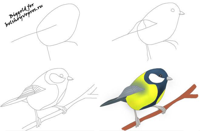 Рисунки с птицами нарисованное