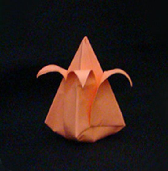 «Тюльпан»