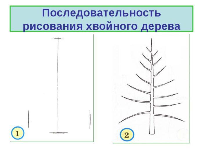Схема рисования елки