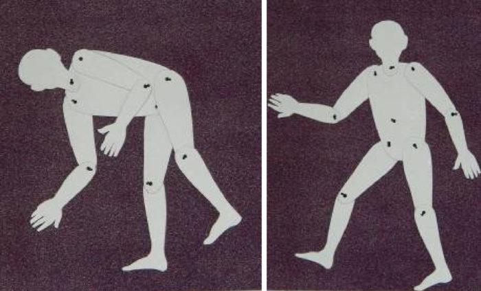 Подвижная модель фигуры человека