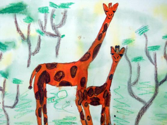 всего картинки рисование животных в старшей группе фото милых