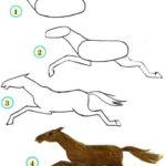 Пошаговая инструкция рисования лошади