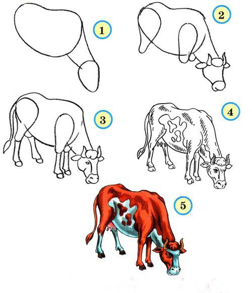 Поэтапные схемы животных