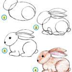 Схема рисования кролик