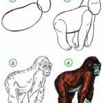 Схема рисования оьезьяны