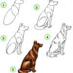 Схема рисования собака