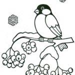 Снегирь — шаблон