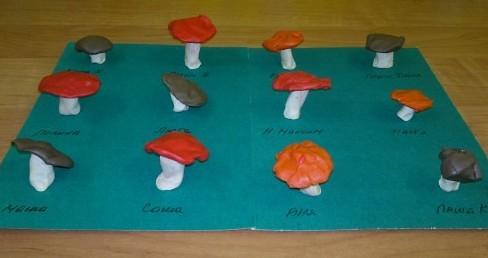 Выставка пластилиновых грибов