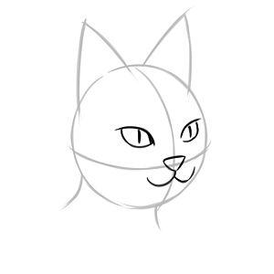 Голова кошки с глазами