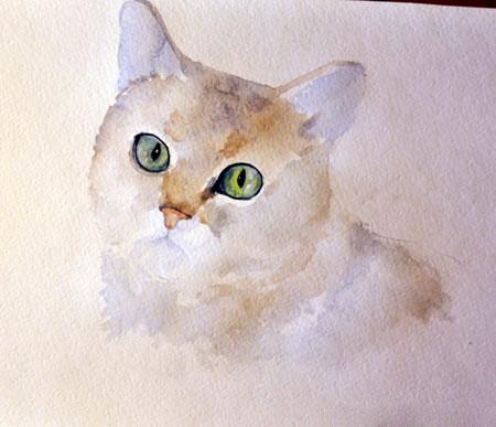 Кошка с шерстью