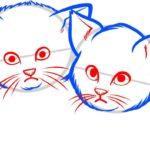 Котята, шаг 4
