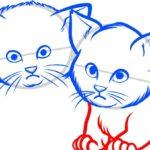 Котята, шаг 5