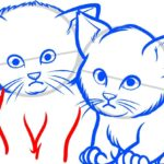 Котята, шаг 7