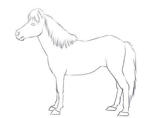 Пони в полный рост, фото шесть