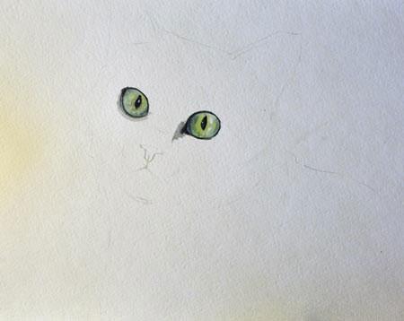 Тонкий контур кошки и наведённые глаза