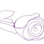 Рисунок розы ручкой, фото 2
