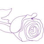 Рисунок розы ручкой, фото 3