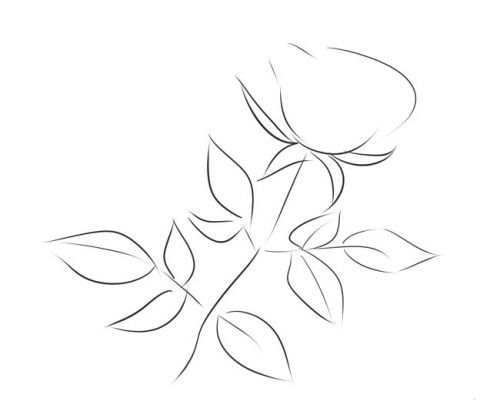 Розе на стебле, фото 2
