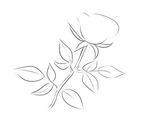 Розе на стебле, фото 3