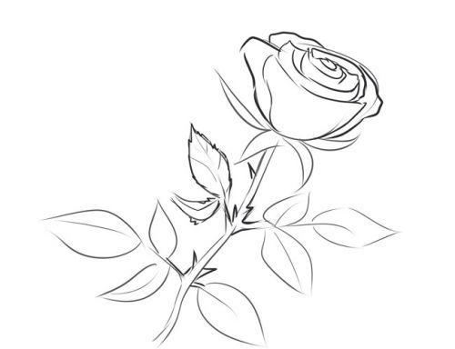 Розе на стебле, фото 4