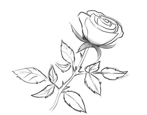 Розе на стебле, фото 6