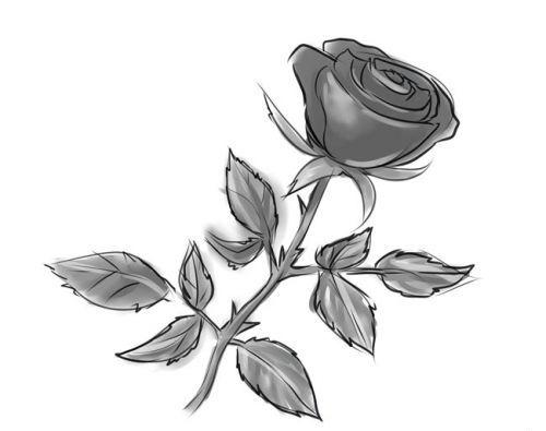 Розе на стебле, фото 9
