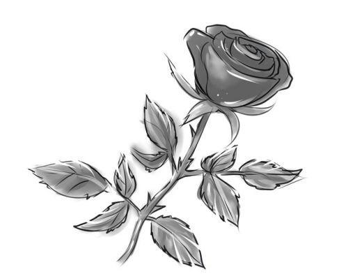 Розе на стебле, фото 10