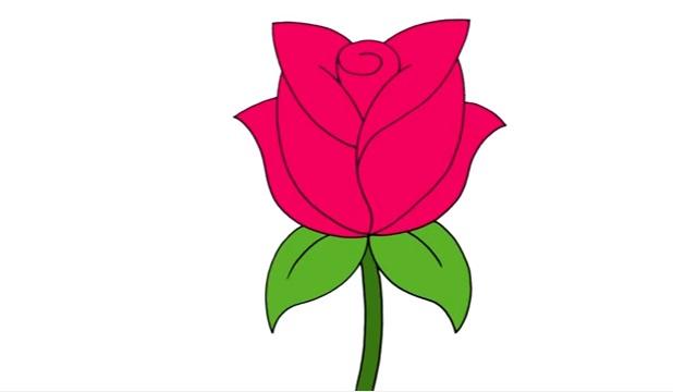 Яркая розовая роза на стебле