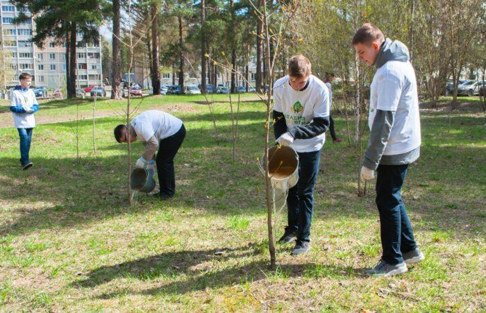 Духовно-нравственное воспитание школьников в рамках ФГОС методом «высадки» экологического десанта школьников