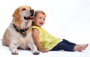 отговорить ребенка от собаки