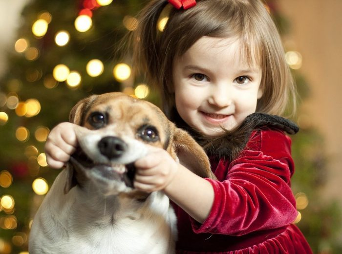 как отговорить ребенка от покупки собаки