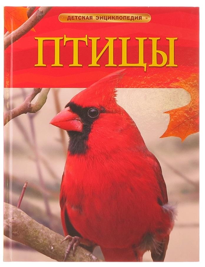 Детская энциклопедия 6+ − птицы
