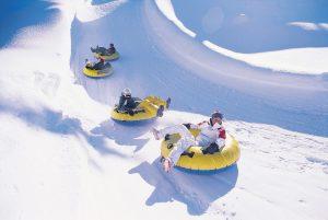 Товары для зимних развлечений