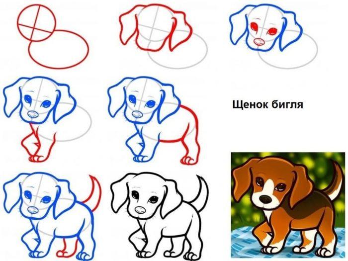 Схема рисования щенка