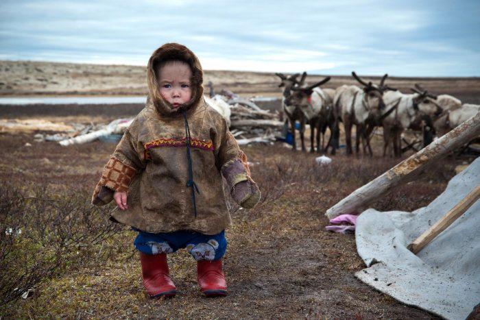Ребёнок кочевников на фоне стада