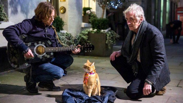 Уличный кот по кличке Боб